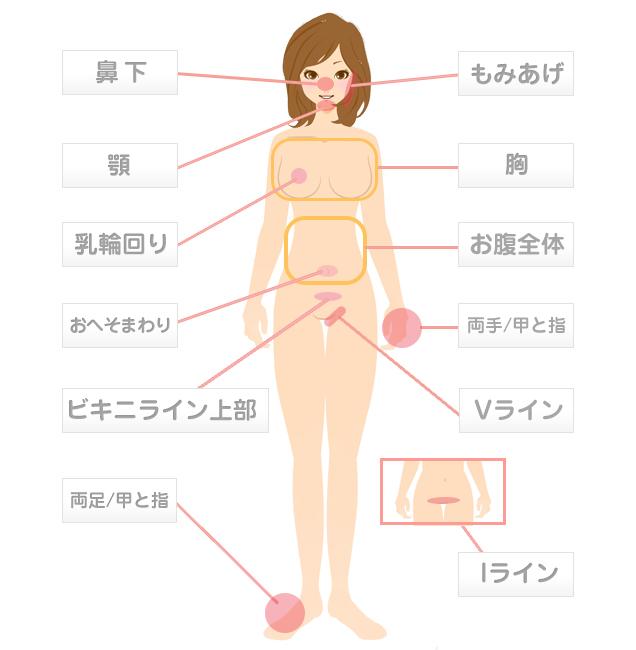 woman-chart01